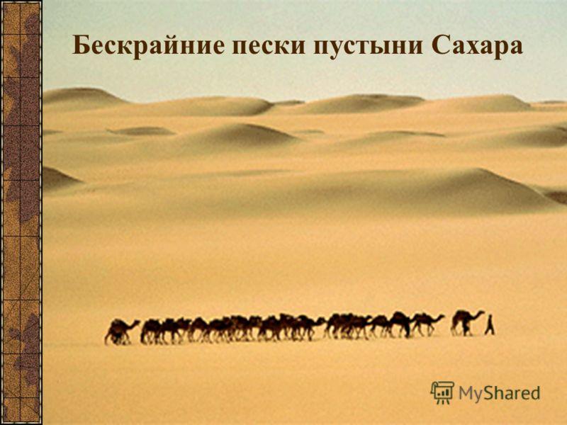 Бескрайние пески пустыни Сахара
