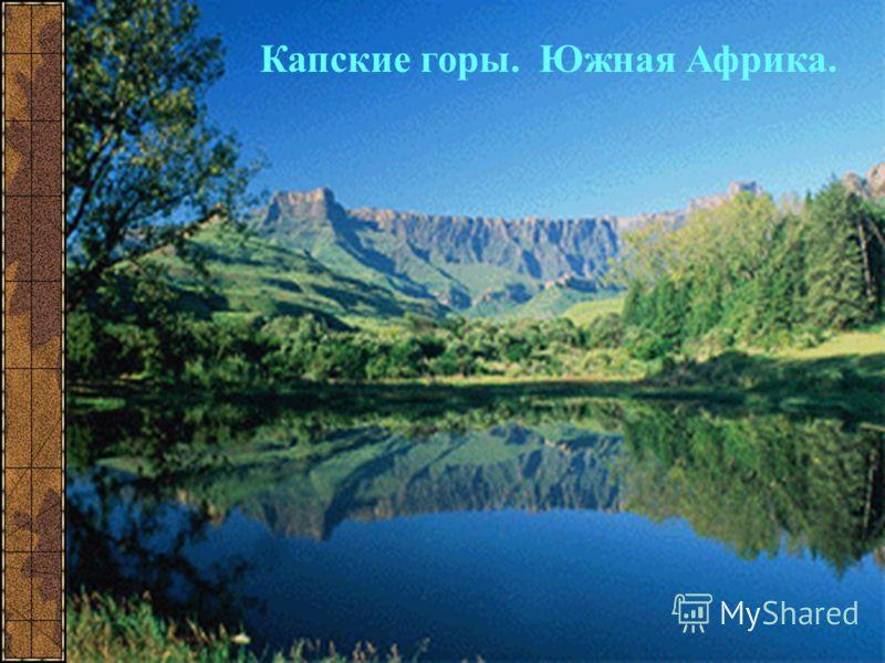 Капские горы. Южная Африка.