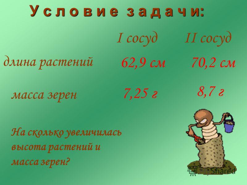 I сосуд длина растений 70,2 см II cосуд 62,9 см 7,25 г 8,7 г масса зерен На сколько увеличилась высота растений и масса зерен? У с л о в и е з а д а ч и: