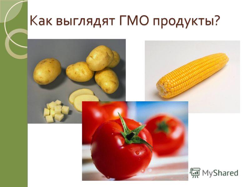 Как выглядят ГМО продукты ?