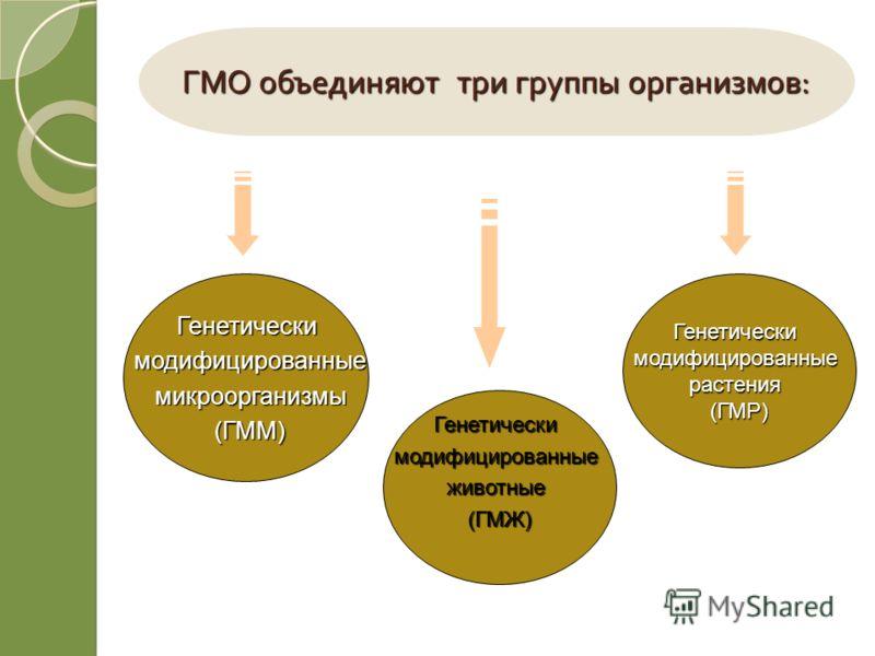 ГМО объединяют три группы организмов : Генетическимодифицированные микроорганизмы микроорганизмы(ГММ) Генетическимодифицированныеживотные(ГМЖ) Генетическимодифицированныерастения(ГМР)