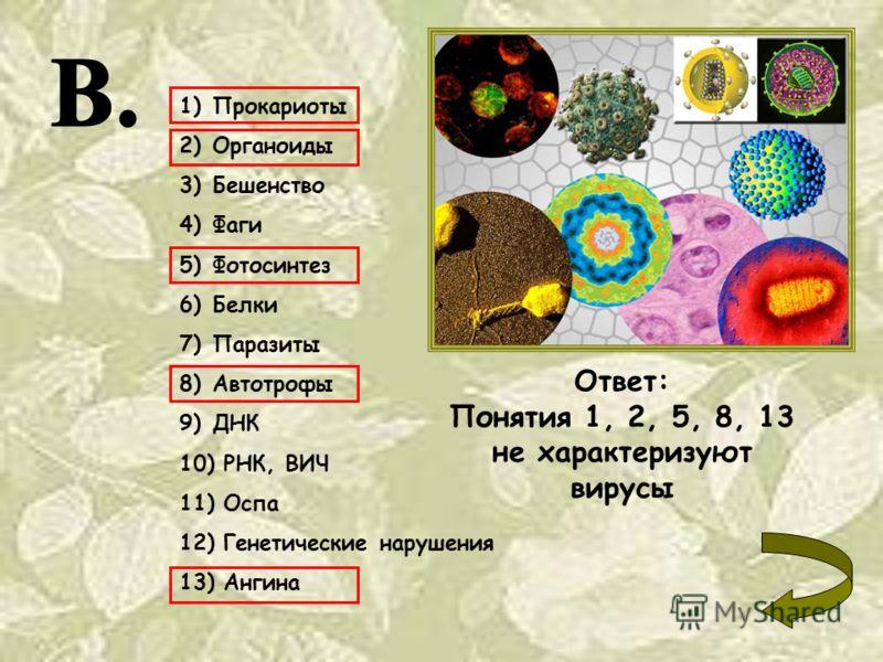 1)Прокариоты 2)Органоиды 3)Бешенство 4)Фаги 5)Фотосинтез 6)Белки 7)Паразиты 8)Автотрофы 9)ДНК 10) РНК, ВИЧ 11) Оспа 12) Генетические нарушения 13) Ангина Ответ: Понятия 1, 2, 5, 8, 13 не характеризуют вирусы
