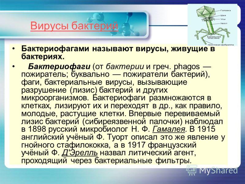 Вирусы бактерий Бактериофагами называют вирусы, живущие в бактериях. Бактериофаги (от бактерии и греч. phagos пожиратель; буквально пожиратели бактерий), фаги, бактериальные вирусы, вызывающие разрушение (лизис) бактерий и других микроорганизмов. Бак