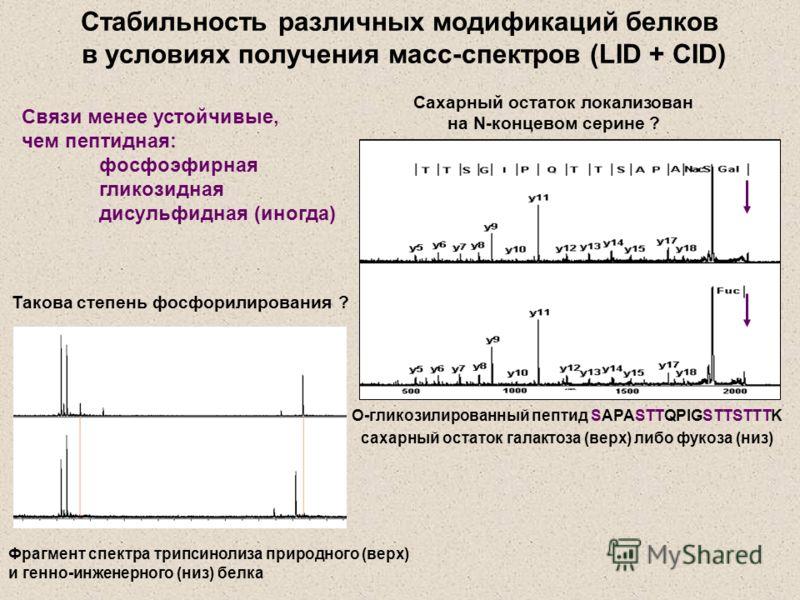 О-гликозилированный пептид SAPASTTQPIGSTTSTTTK сахарный остаток галактоза (верх) либо фукоза (низ) Сахарный остаток локализован на N-концевом серине ? Стабильность различных модификаций белков в условиях получения масс-спектров (LID + CID) Pi N-ac Фр