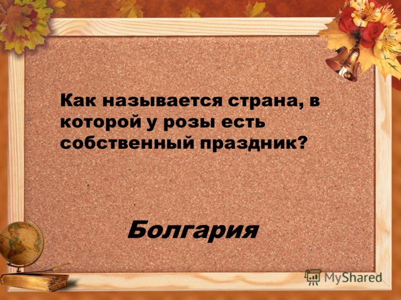 Болгария Как называется страна, в которой у розы есть собственный праздник?