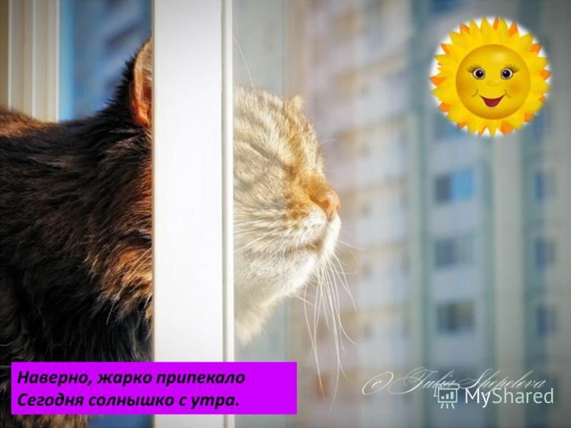 Наверно, жарко припекало Сегодня солнышко с утра.