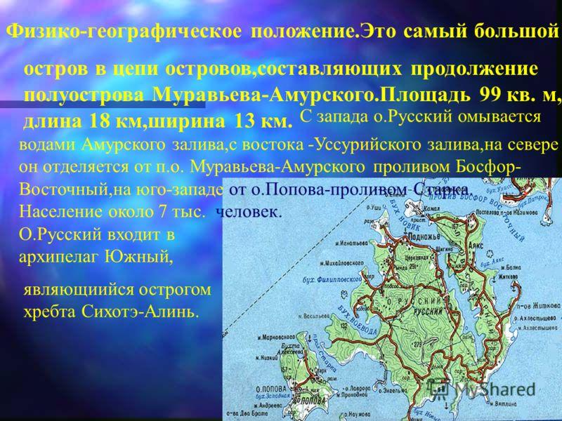 Физико-географическое положение.Это самый большой остров в цепи островов,составляющих продолжение полуострова Муравьева-Амурского.Площадь 99 кв. м, длина 18 км,ширина 13 км. С запада о.Русский омывается водами Амурского залива,с востока -Уссурийского
