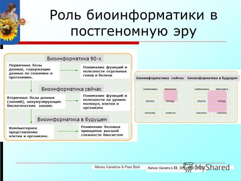 Роль биоинформатики в постгеномную эру Биоинформатика 90-х Биоинформатика сейчас Биоинформатика в будущем Первичные базы данных, содержащие данные по геномике и протеомике. Понимание функций и полезности отдельных генов и белков Понимание функций и п