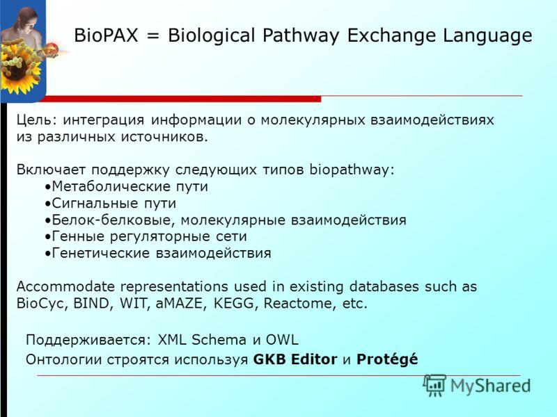 BioPAX = Biological Pathway Exchange Language Цель: интеграция информации о молекулярных взаимодействиях из различных источников. Включает поддержку следующих типов biopathway: Метаболические пути Сигнальные пути Белок-белковые, молекулярные взаимоде