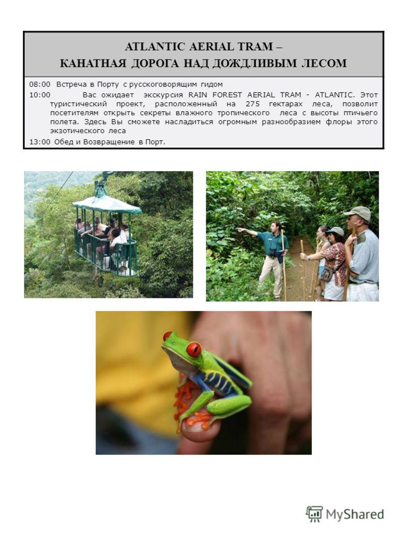 ATLANTIC AERIAL TRAM – КАНАТНАЯ ДОРОГА НАД ДОЖДЛИВЫМ ЛЕСОМ 08:00 Встреча в Порту с русскоговорящим гидом 10:00Вас ожидает экскурсия RAIN FOREST AERIAL TRAM - ATLANTIC. Этот туристический проект, расположенный на 275 гектарах леса, позволит посетителя