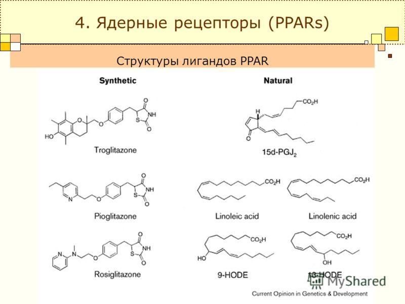 Структуры лигандов PPAR 4. Ядерные рецепторы (PPARs)