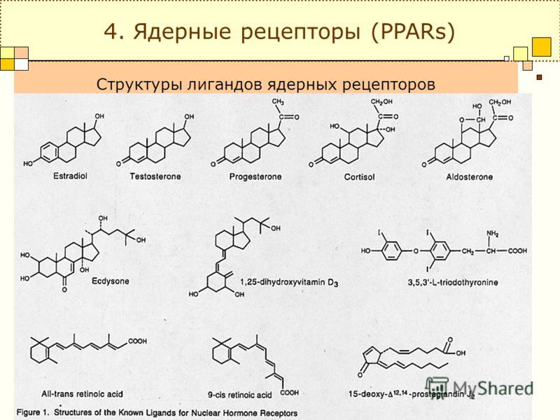 Структуры лигандов ядерных рецепторов 4. Ядерные рецепторы (PPARs)