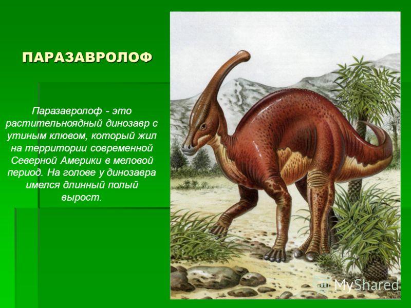 ПАРАЗАВРОЛОФ Паразавролоф - это растительноядный динозавр с утиным клювом, который жил на территории современной Северной Америки в меловой период. На голове у динозавра имелся длинный полый вырост.