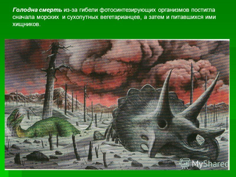Голодна смерть из-за гибели фотосинтезирующих организмов постигла сначала морских и сухопутных вегетарианцев, а затем и питавшихся ими хищников.