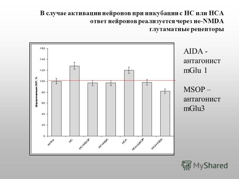 В случае активации нейронов при инкубации с HC или HCA ответ нейронов реализуется через не-NMDA глутаматные рецепторы AIDA - антагонист mGlu 1 MSOP – антагонист mGlu3