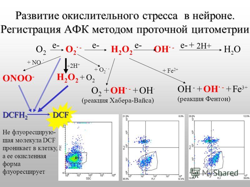Развитие окислительного стресса в нейроне. Регистрация АФК методом проточной цитометрии О 2 е- О 2 - е- Н 2 О 2 е- ОН - е- + 2Н+ Н 2 О + 2Н + Н 2 О 2 + О 2 О 2 + ОН - + ОН (реакция Хабера-Вайса) + О 2 - ОН - + ОН - + Fe 3+ (реакция Фентон) + NO ONOO