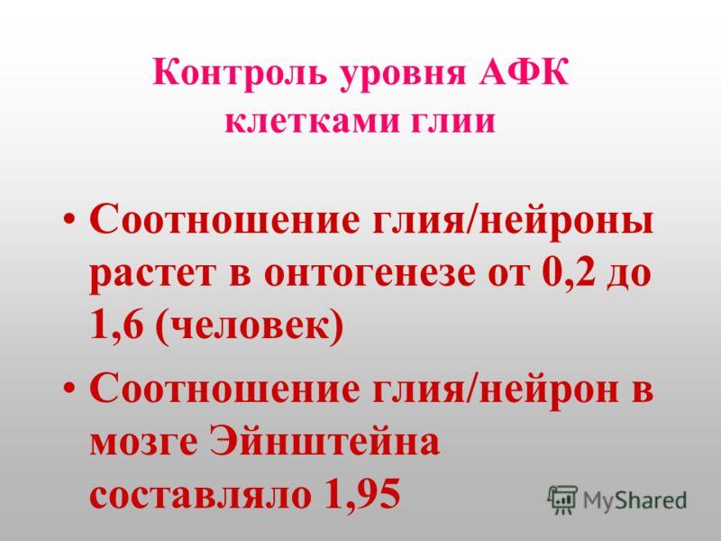 Контроль уровня АФК клетками глии Соотношение глия/нейроны растет в онтогенезе от 0,2 до 1,6 (человек) Соотношение глия/нейрон в мозге Эйнштейна составляло 1,95