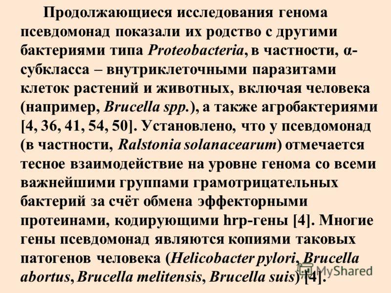 Продолжающиеся исследования генома псевдомонад показали их родство с другими бактериями типа Proteobacteria, в частности, α- субкласса – внутриклеточными паразитами клеток растений и животных, включая человека (например, Brucella spp.), а также агроб