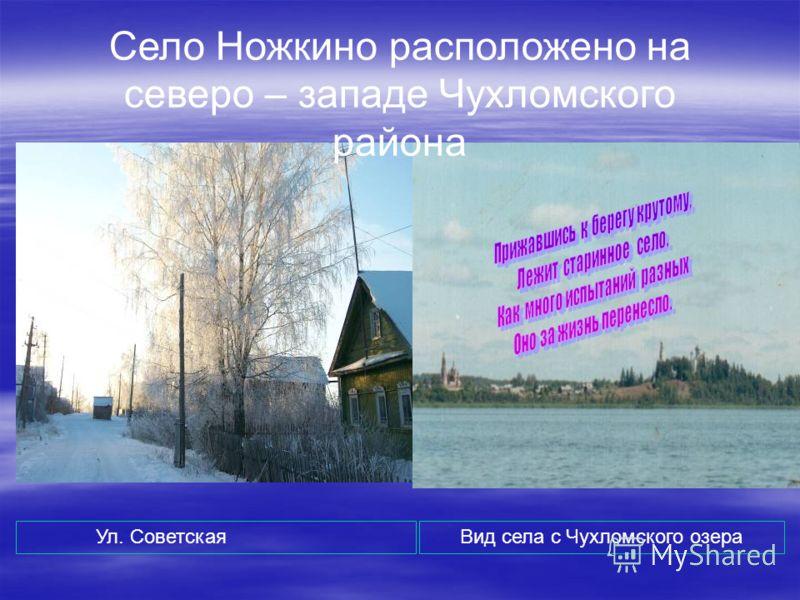 Село Ножкино расположено на северо – западе Чухломского района Ул. СоветскаяВид села с Чухломского озера