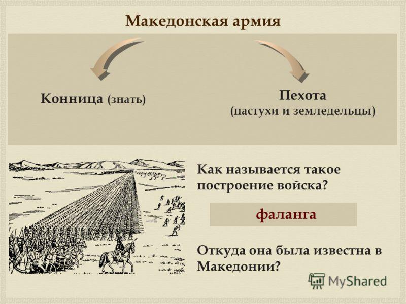 Македонская армия Как называется такое построение войска? фаланга Откуда она была известна в Македонии? Конница (знать) Пехота (пастухи и земледельцы)