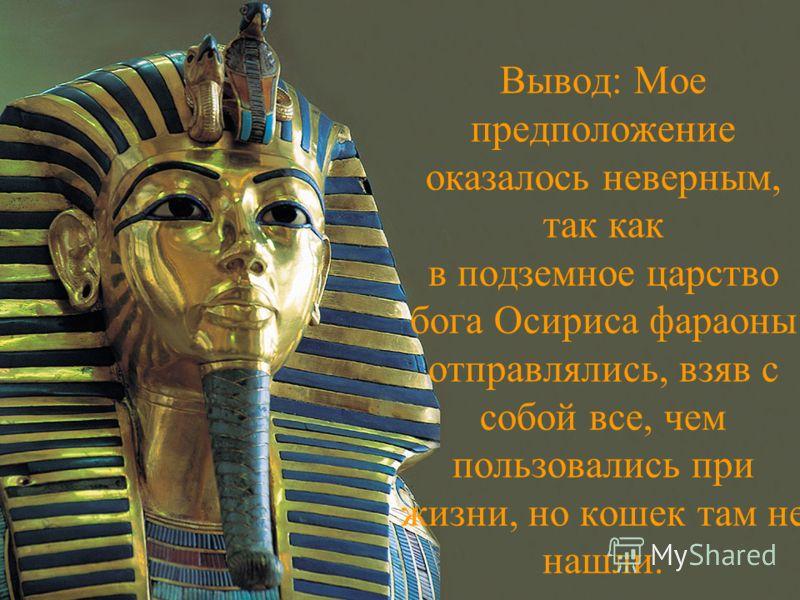 Вывод: Мое предположение оказалось неверным, так как в подземное царство бога Осириса фараоны отправлялись, взяв с собой все, чем пользовались при жизни, но кошек там не нашли.
