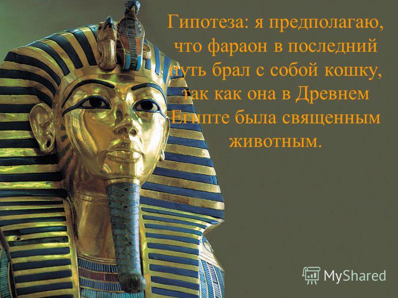 Гипотеза: я предполагаю, что фараон в последний путь брал с собой кошку, так как она в Древнем Египте была священным животным.