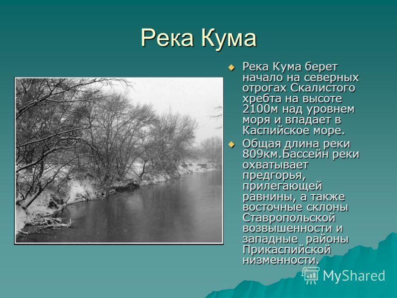 Река Кума Река Кума берет начало на северных отрогах Скалистого хребта на высоте 2100м над уровнем моря и впадает в Каспийское море. Река Кума берет начало на северных отрогах Скалистого хребта на высоте 2100м над уровнем моря и впадает в Каспийское