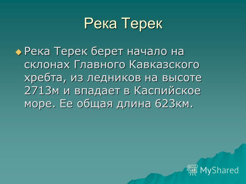 Река Терек Река Терек берет начало на склонах Главного Кавказского хребта, из ледников на высоте 2713м и впадает в Каспийское море. Ее общая длина 623км.
