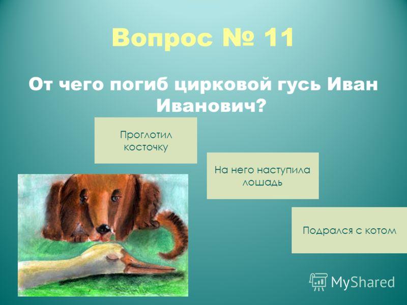 Вопрос 11 От чего погиб цирковой гусь Иван Иванович? Подрался с котом На него наступила лошадь Проглотил косточку