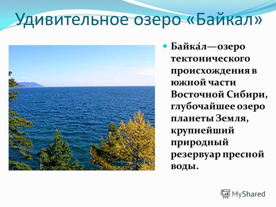Удивительное озеро «Байкал» Байка́лозеро тектонического происхождения в южной части Восточной Сибири, глубочайшее озеро планеты Земля, крупнейший природный резервуар пресной воды.