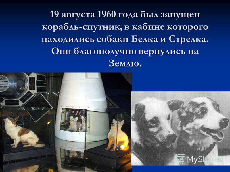 19 августа 1960 года был запущен корабль-спутник, в кабине которого находились собаки Белка и Стрелка. Они благополучно вернулись на Землю. 19 августа 1960 года был запущен корабль-спутник, в кабине которого находились собаки Белка и Стрелка. Они бла