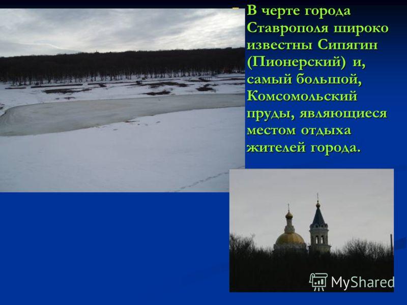 В черте города Ставрополя широко известны Сипягин (Пионерский) и, самый большой, Комсомольский пруды, являющиеся местом отдыха жителей города.
