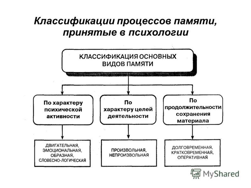 Классификации процессов памяти, принятые в психологии