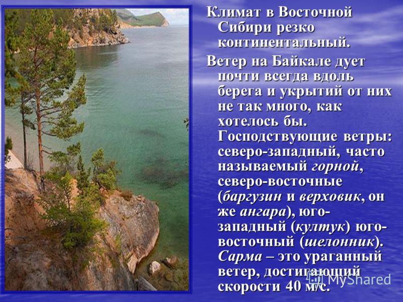 Климат в Восточной Сибири резко континентальный. Климат в Восточной Сибири резко континентальный. Ветер на Байкале дует почти всегда вдоль берега и укрытий от них не так много, как хотелось бы. Господствующие ветры: северо-западный, часто называемый