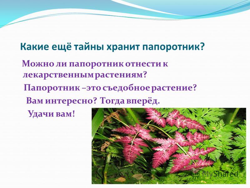 Какие ещё тайны хранит папоротник? Можно ли папоротник отнести к лекарственным растениям? Папоротник –это съедобное растение? Вам интересно? Тогда вперёд. Удачи вам!