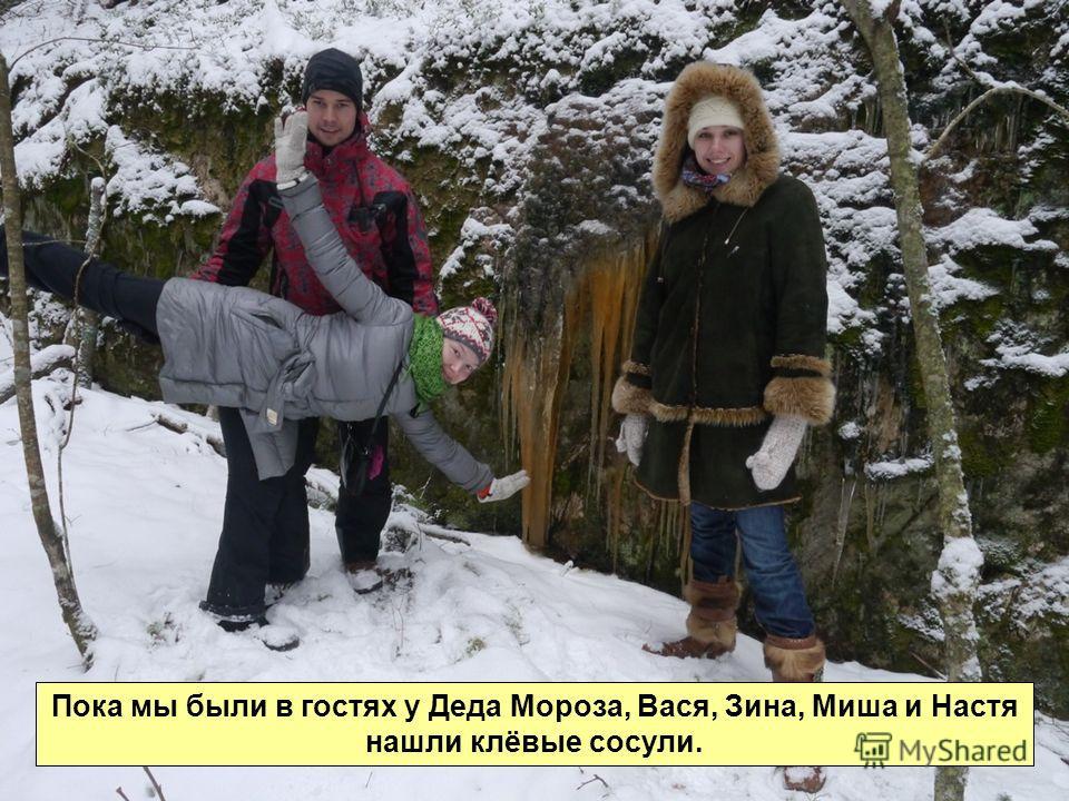 Пока мы были в гостях у Деда Мороза, Вася, Зина, Миша и Настя нашли клёвые сосули.