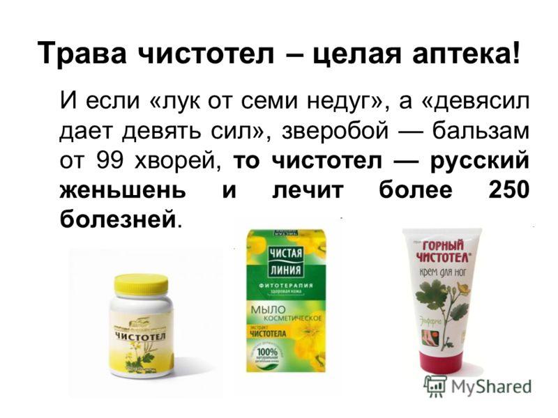 Трава чистотел – целая аптека! И если «лук от семи недуг», а «девясил дает девять сил», зверобой бальзам от 99 хворей, то чистотел русский женьшень и лечит более 250 болезней.