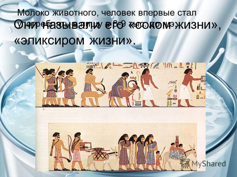 Молоко животного, человек впервые стал употреблять в пищу в 8-9 тыс. до н.э. Они называли его «соком жизни», «эликсиром жизни».
