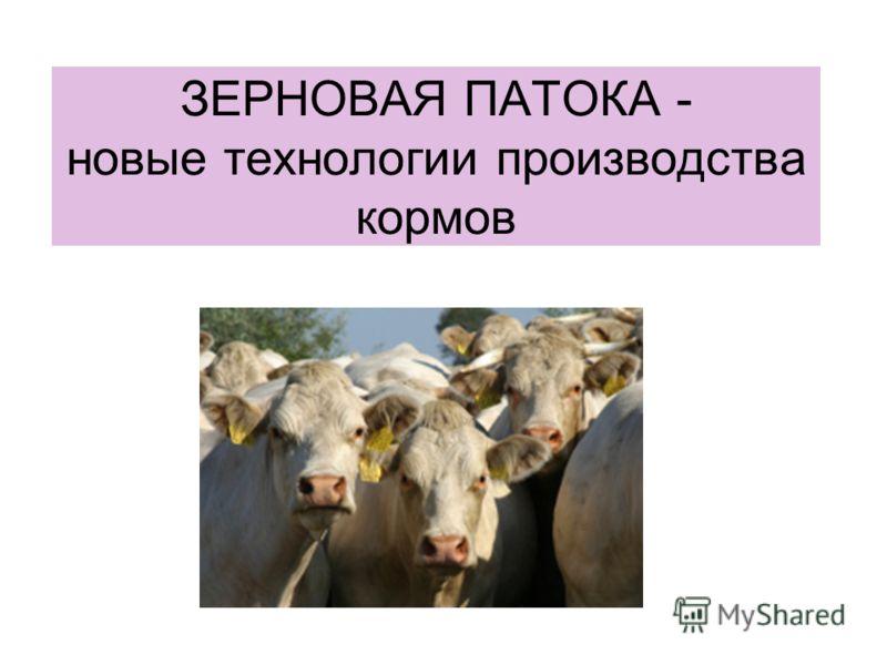 ЗЕРНОВАЯ ПАТОКА - новые технологии производства кормов
