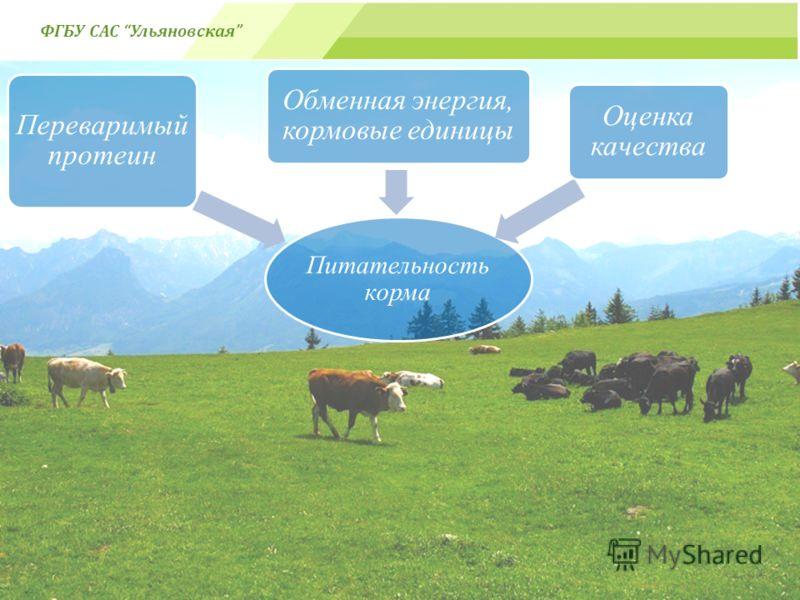 Питательность корма Переваримый протеин Обменная энергия, кормовые единицы Оценка качества ФГБУ САС Ульяновская