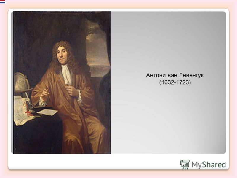 Антони ван Левенгук (1632-1723)