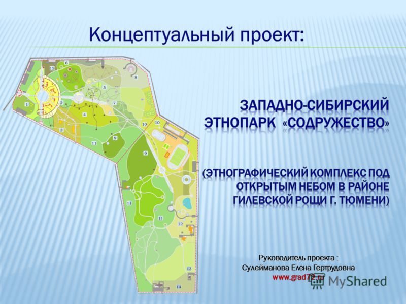 Руководитель проекта : Сулейманова Елена Гертрудовна www.grad72.ru