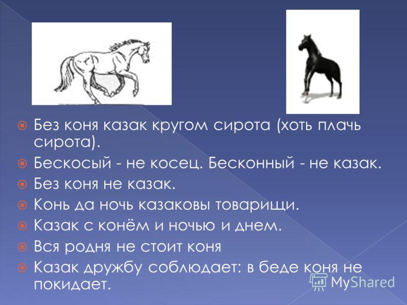 Без коня казак кругом сирота (хоть плачь сирота). Бескосый - не косец. Бесконный - не казак. Без коня не казак. Конь да ночь казаковы товарищи. Казак с конём и ночью и днем. Вся родня не стоит коня Казак дружбу соблюдает: в беде коня не покидает.