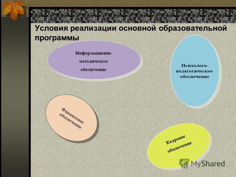 Условия реализации основной образовательной программы Информационно- методическое обеспечение Информационно- методическое обеспечение Кадровое обеспечение Кадровое обеспечение Финансовое обеспечение Финансовое обеспечение