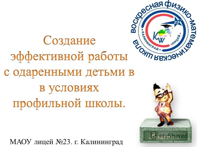 МАОУ лицей 23. г. Калининград