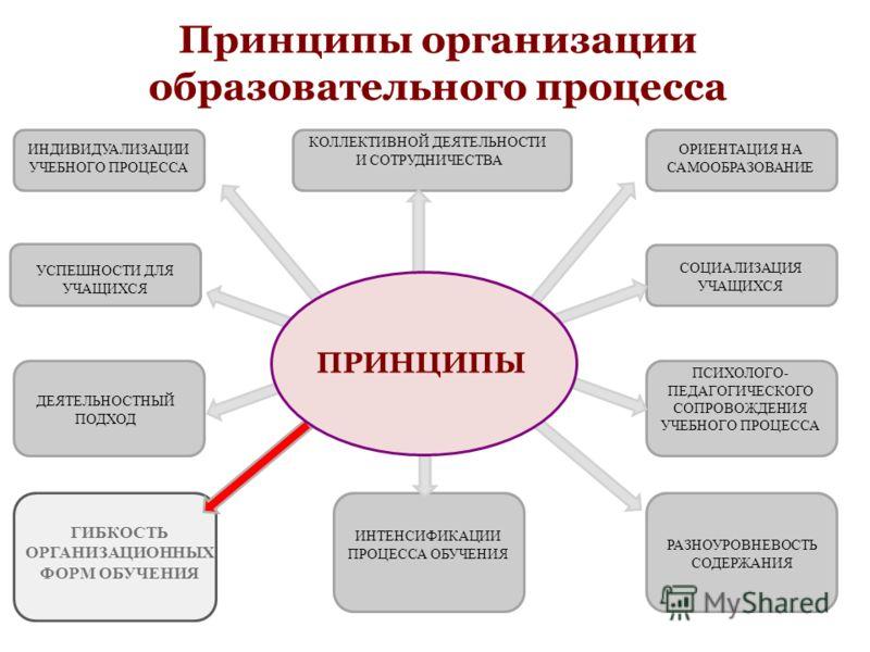 Принципы организации образовательного процесса ИНДИВИДУАЛИЗАЦИИ УЧЕБНОГО ПРОЦЕССА КОЛЛЕКТИВНОЙ ДЕЯТЕЛЬНОСТИ И СОТРУДНИЧЕСТВА ОРИЕНТАЦИЯ НА САМООБРАЗОВАНИЕ УСПЕШНОСТИ ДЛЯ УЧАЩИХСЯ ДЕЯТЕЛЬНОСТНЫЙ ПОДХОД ГИБКОСТЬ ОРГАНИЗАЦИОННЫХ ФОРМ ОБУЧЕНИЯ СОЦИАЛИЗАЦ