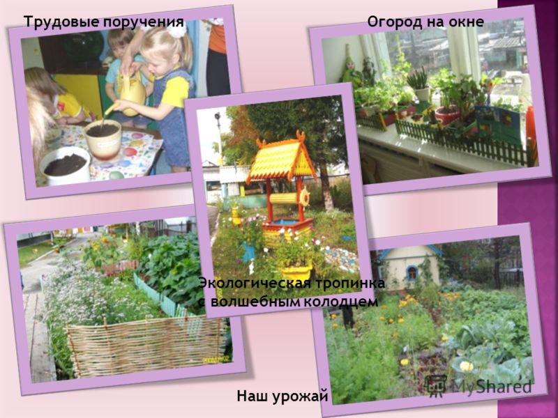 Наш урожай Экологическая тропинка с волшебным колодцем Огород на окнеТрудовые поручения