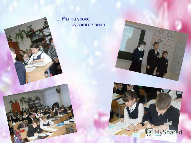 … Мы на уроке русского языка.