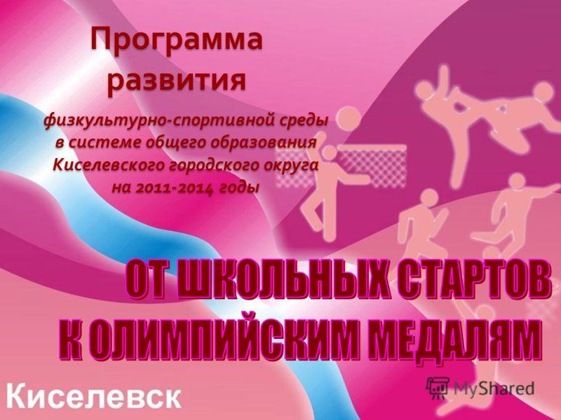 Программа развития физкультурно-спортивной среды в системе общего образования Киселевского городского округа на 2011-2014 годы
