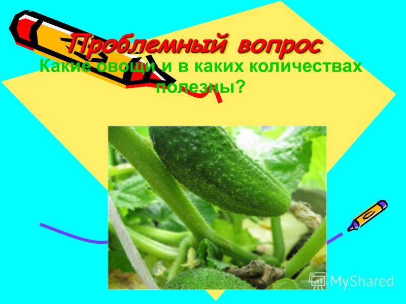 Проблемный вопрос Какие овощи и в каких количествах полезны?